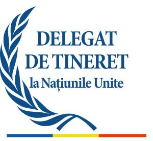Delegat ONU_RO_jpg-300x275