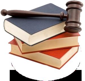 Legea pentru modificarea si completarea Legii 195/2001 – Legea Voluntariatului