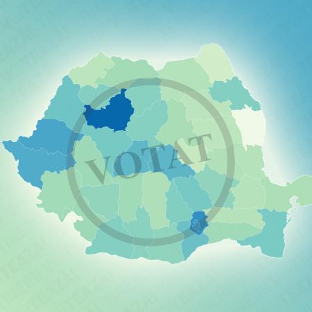 Stop fake news! Tinerii din România au votat în primul tur al alegerilor prezidențiale din 2019