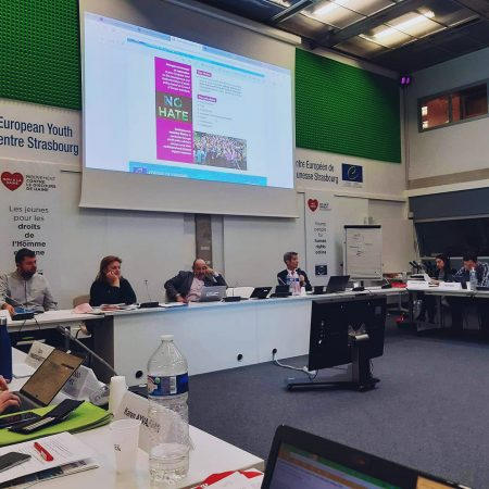CTR has a delegate in the Advisory Council on Youth of the Council of Europe